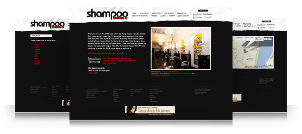 Shampoo Salon Website and Blog